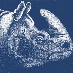 Profile avatar rhinoazul