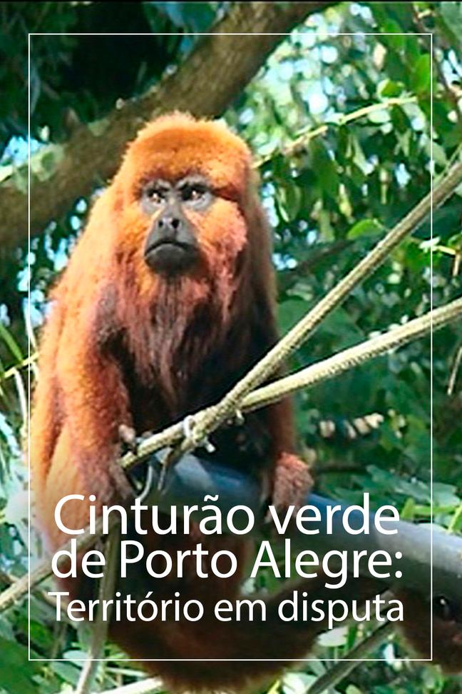 Cinturão verde de Porto Alegre: Território em disputa