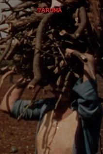 Small 353901 taruma 0 230 0 345 crop