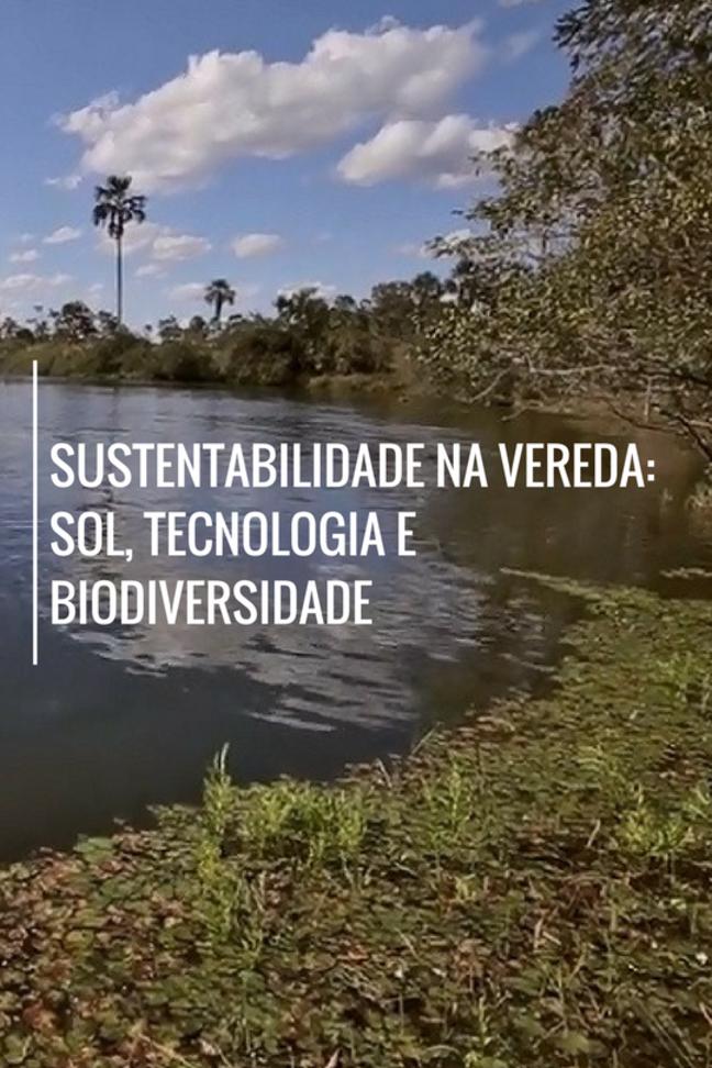 Sustentabilidade na Vereda: Sol, Tecnologia e Biodiversidade