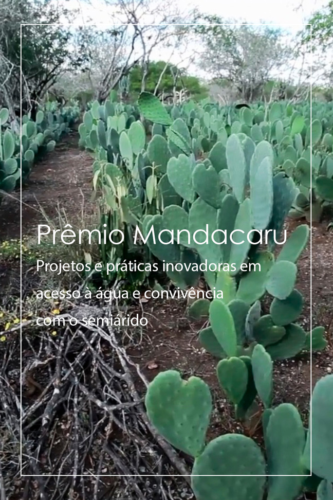 Prêmio Mandacaru. Projetos e práticas inovadoras em acesso à água e convivência com o semiárido