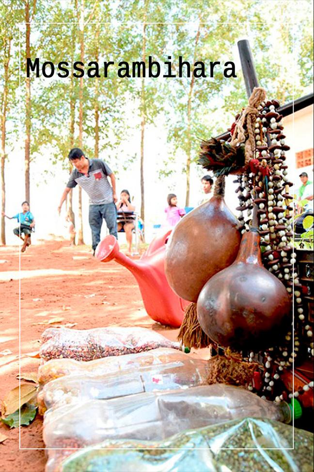 Mosarambihára, semeadores do bem viver