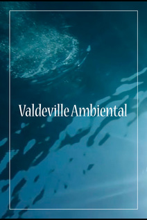 Small valdeville ambiental