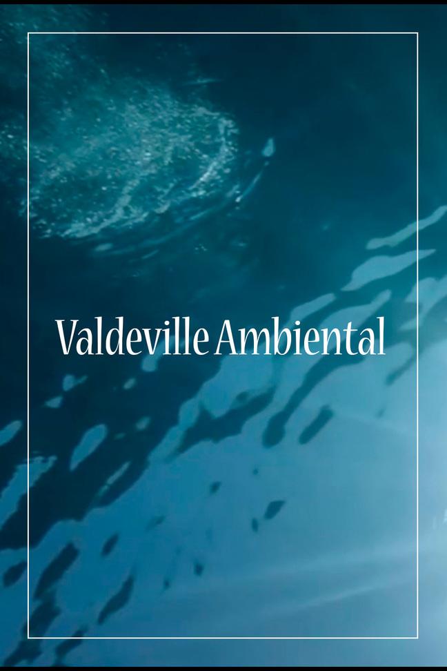 Valdeville ambiental