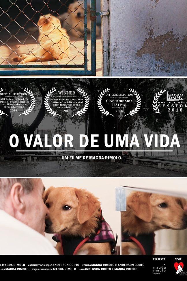 O VALOR DE UMA VIDA
