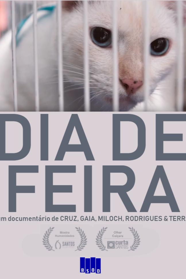 Dia de Feira (Santos Film Fest)