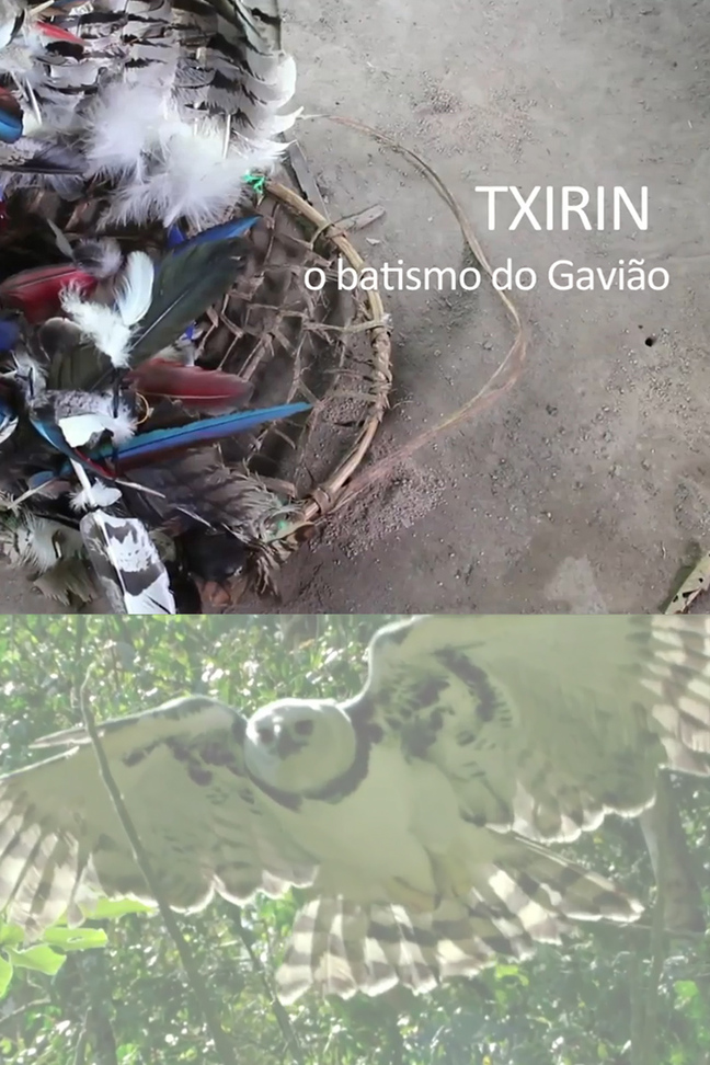 Txirin, o batismo do gavião (Mostra Cineflecha)